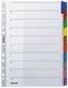 4321 Register - blanko, Karton, A4, 10 Blatt, Taben 10-farbig