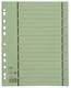 Elba Trennblätter mit Perforation - A4 Überbreite, grün, 100 Stück